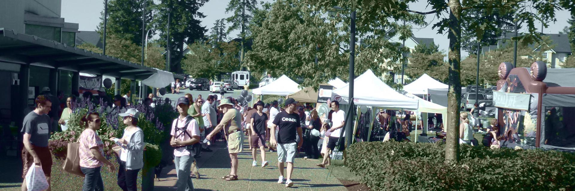 fleetwood-festival